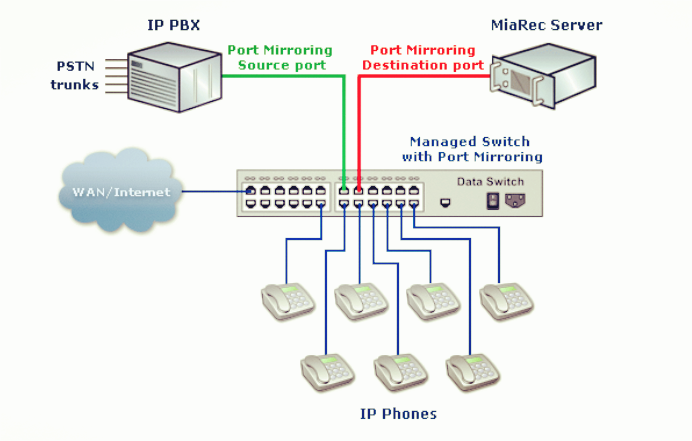 managed switch in network