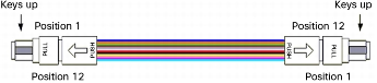 Array Patch Cord