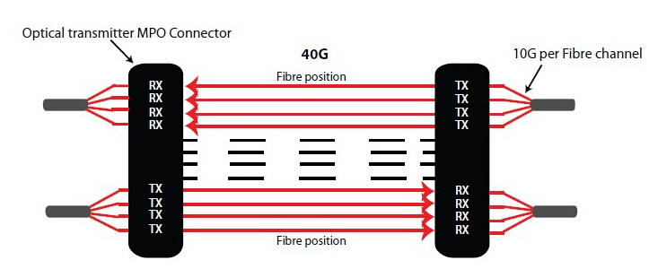 MPO connector in 40GBASE-SR4 QSFP+ transceiver